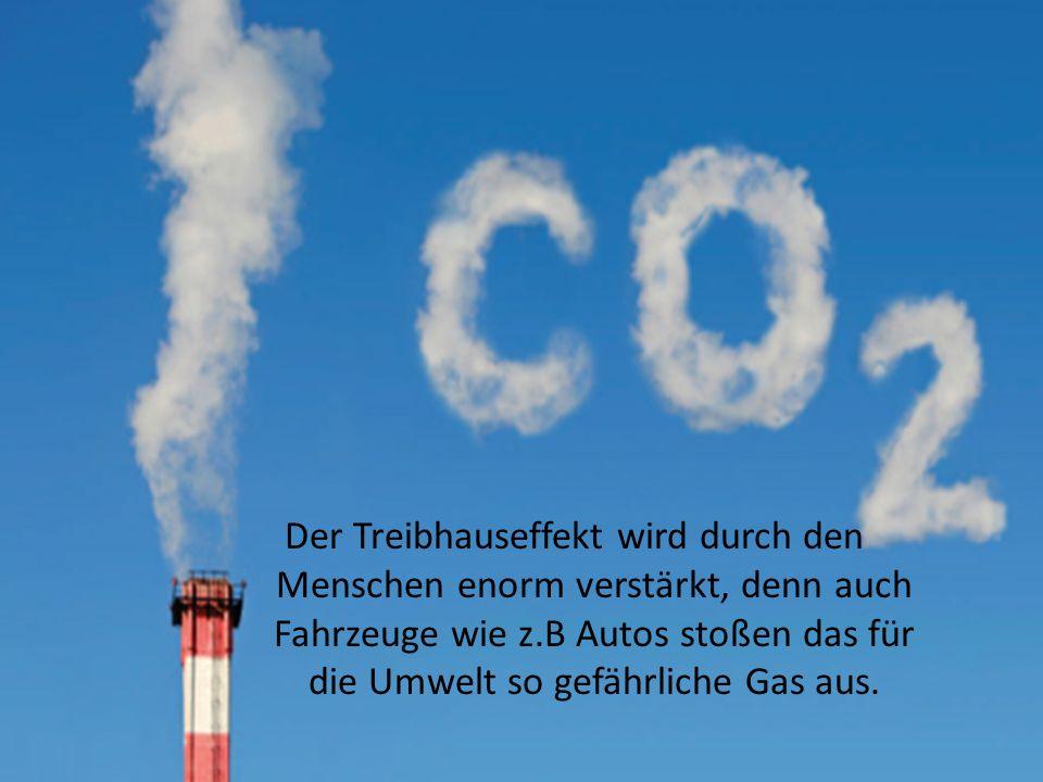Der Treibhauseffekt wird durch den Menschen enorm verstärkt, denn auch Fahrzeuge wie z.B Autos stoßen das für die Umwelt so gefährliche Gas aus.