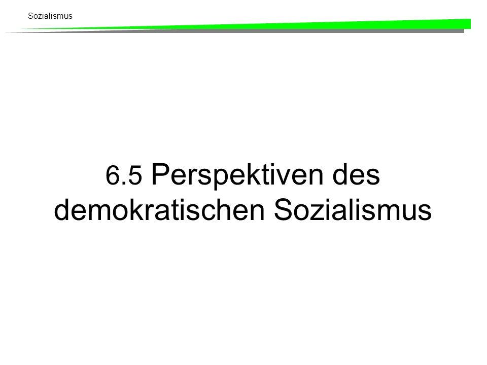 6.5 Perspektiven des demokratischen Sozialismus