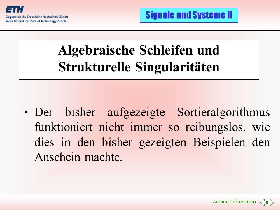 Algebraische Schleifen und Strukturelle Singularitäten