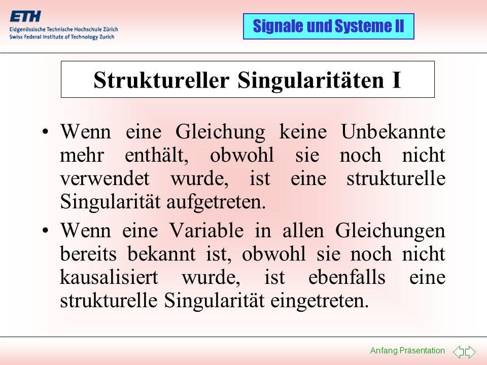Struktureller Singularitäten I