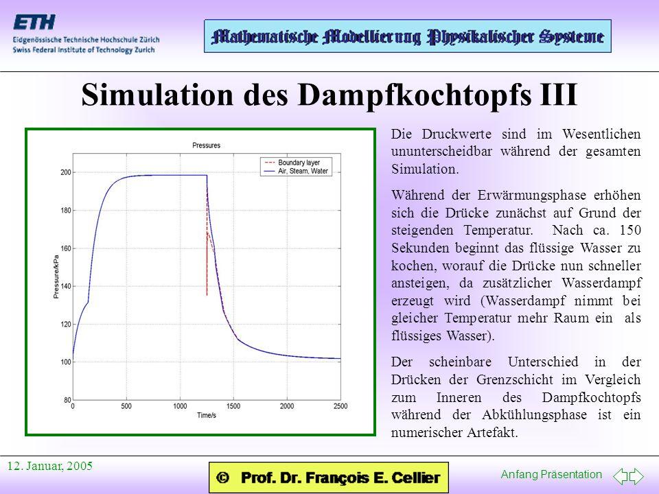 Simulation des Dampfkochtopfs III
