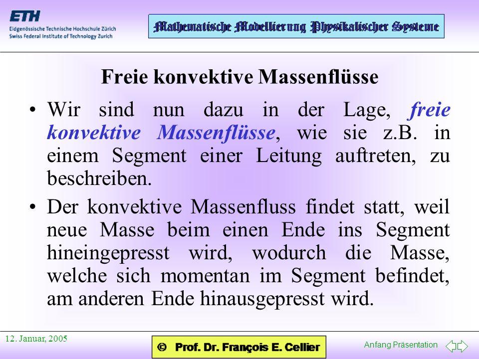Freie konvektive Massenflüsse
