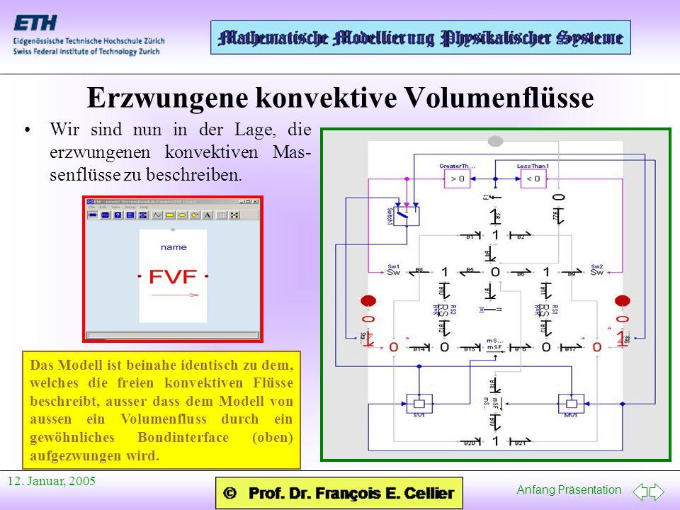Erzwungene konvektive Volumenflüsse