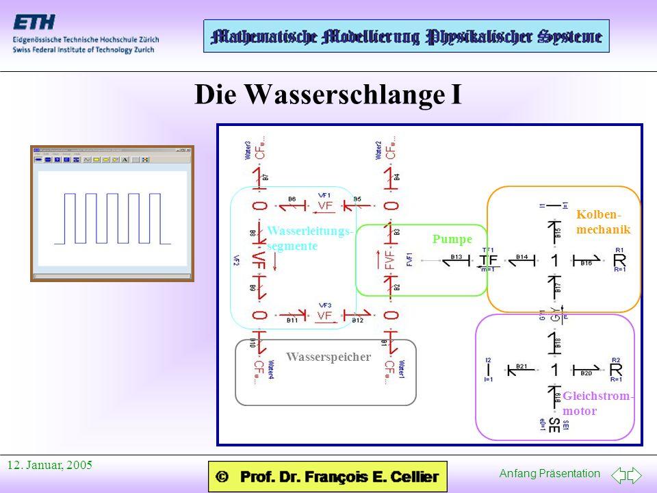 Die Wasserschlange I Kolben-mechanik Wasserleitungs-segmente Pumpe
