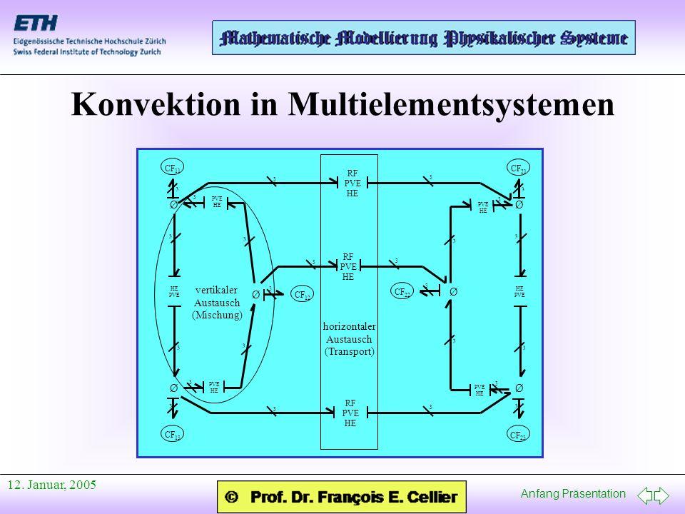 Konvektion in Multielementsystemen