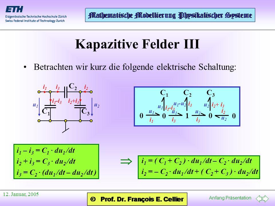 Kapazitive Felder III 