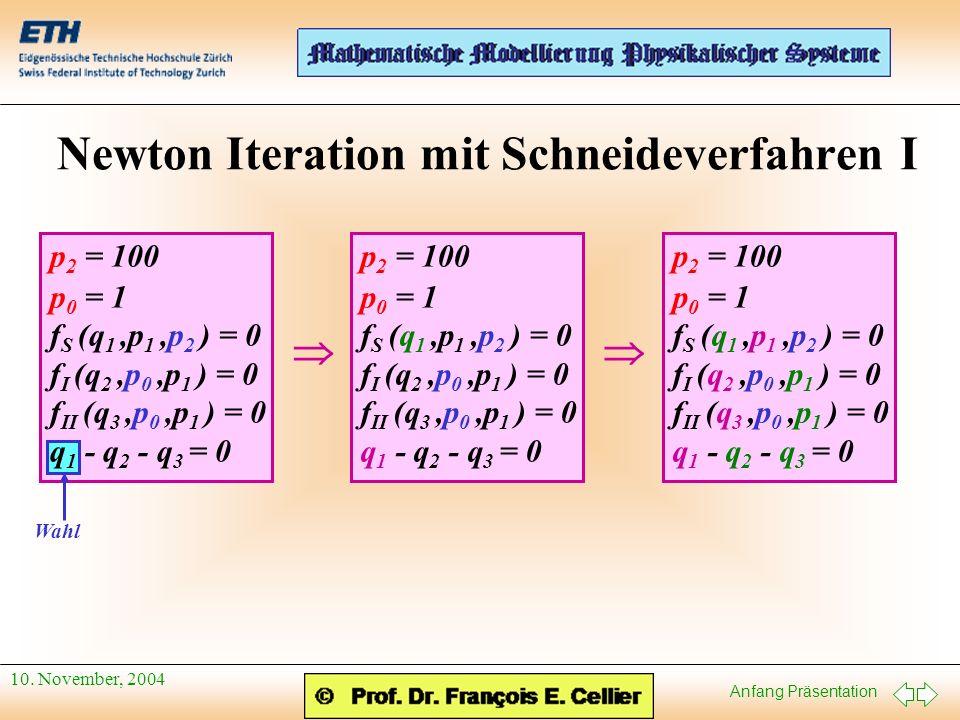 Newton Iteration mit Schneideverfahren I