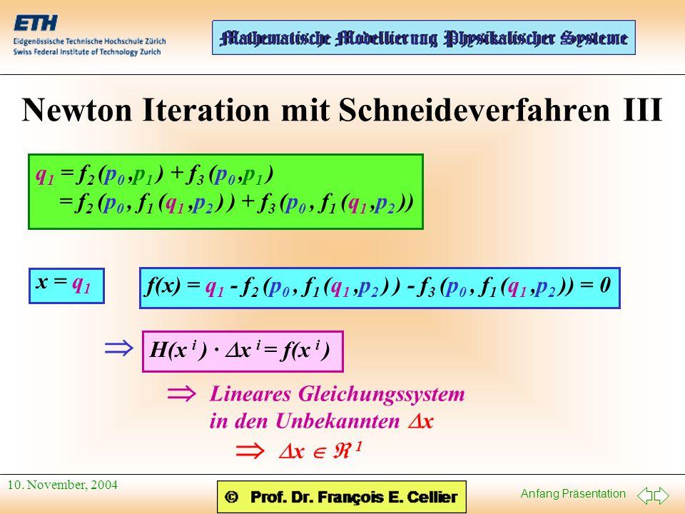 Newton Iteration mit Schneideverfahren III