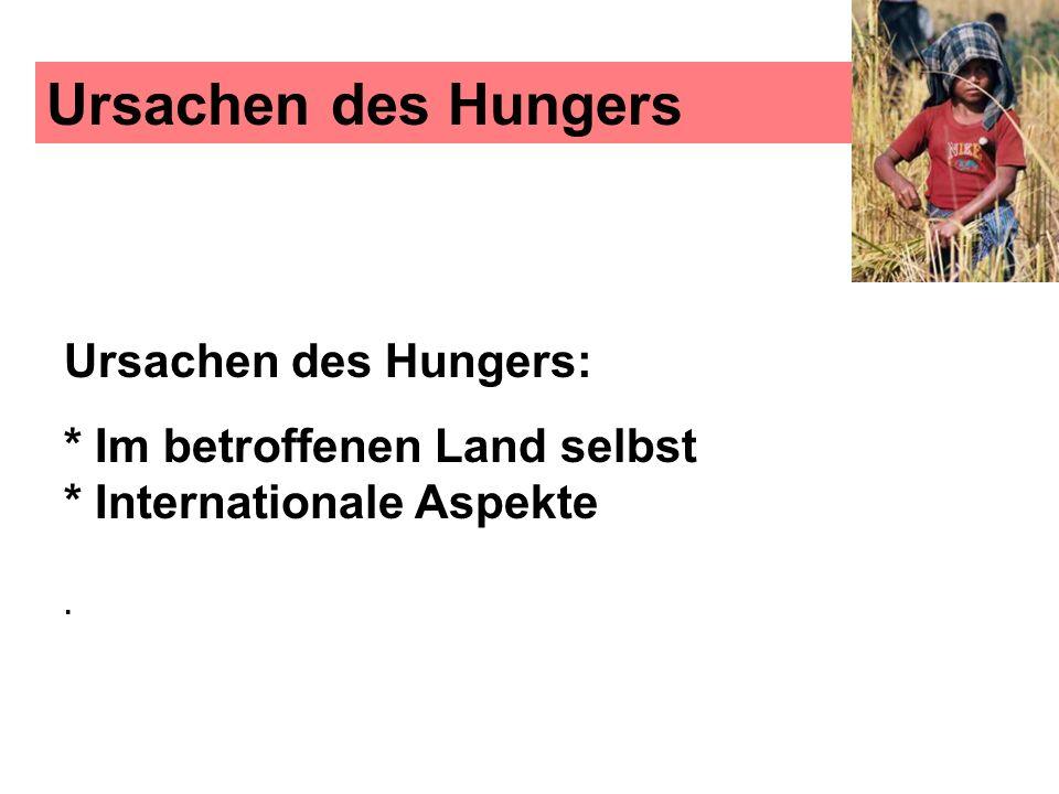 Ursachen des Hungers Ursachen des Hungers: