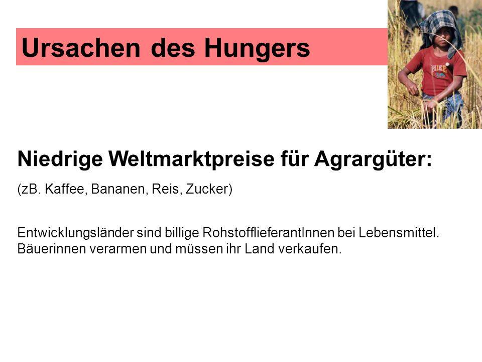 Ursachen des Hungers Niedrige Weltmarktpreise für Agrargüter: (zB. Kaffee, Bananen, Reis, Zucker)