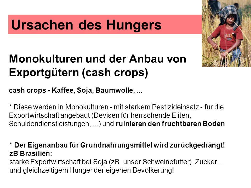 Ursachen des Hungers