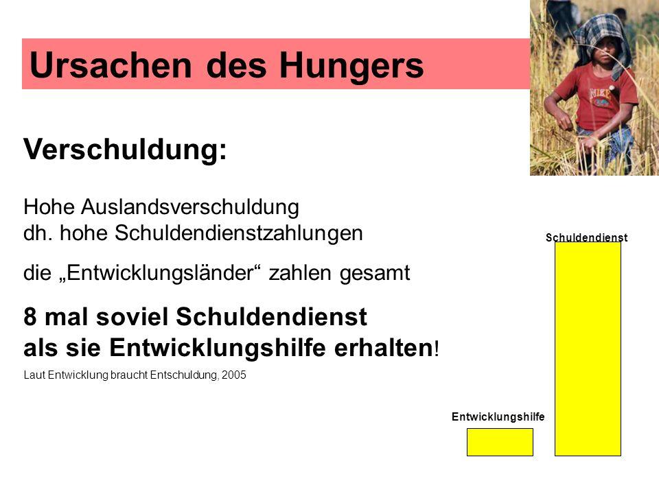 Ursachen des Hungers Verschuldung: