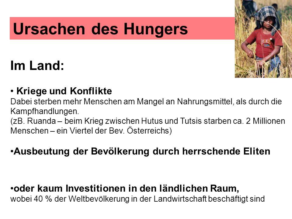 Ursachen des Hungers Im Land: