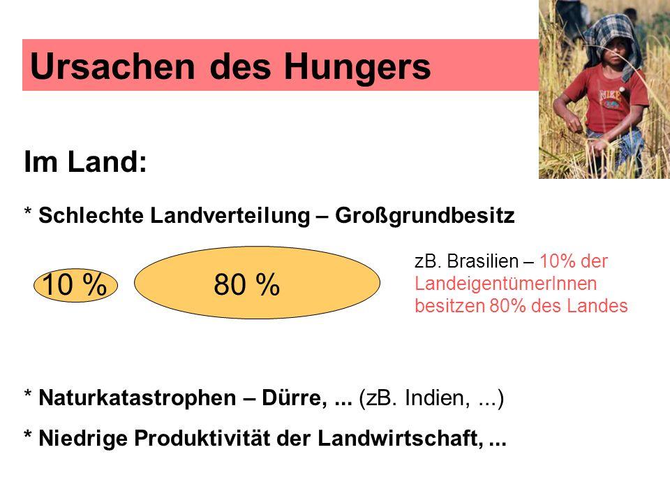 Ursachen des Hungers Im Land: * Schlechte Landverteilung – Großgrundbesitz. zB. Brasilien – 10% der LandeigentümerInnen besitzen 80% des Landes.