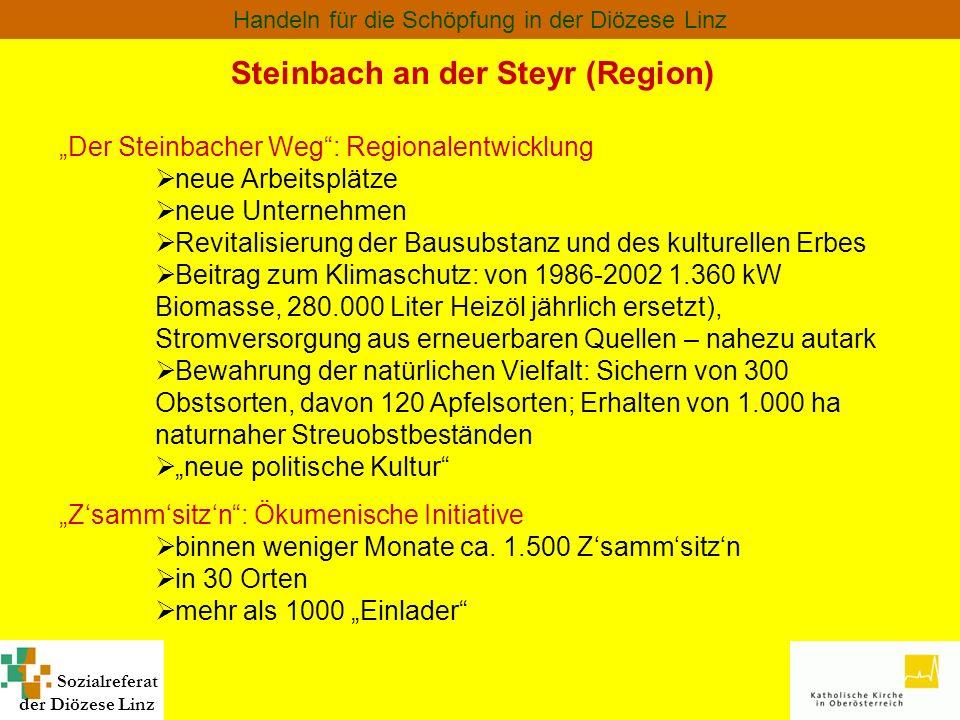 Steinbach an der Steyr (Region)