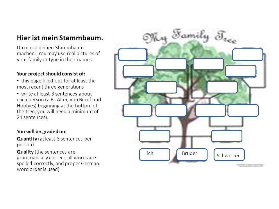 Fantastisch Stammbaum Färbung Seite Fotos - Druckbare Malvorlagen ...