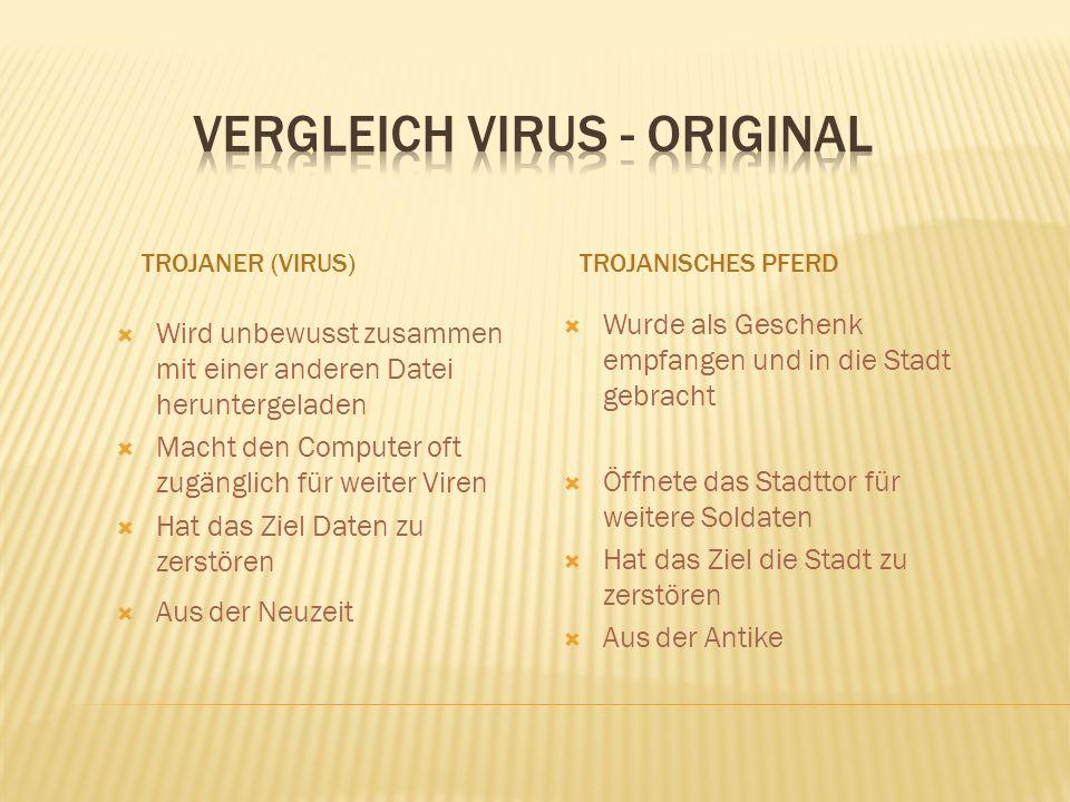 Vergleich Virus - Original