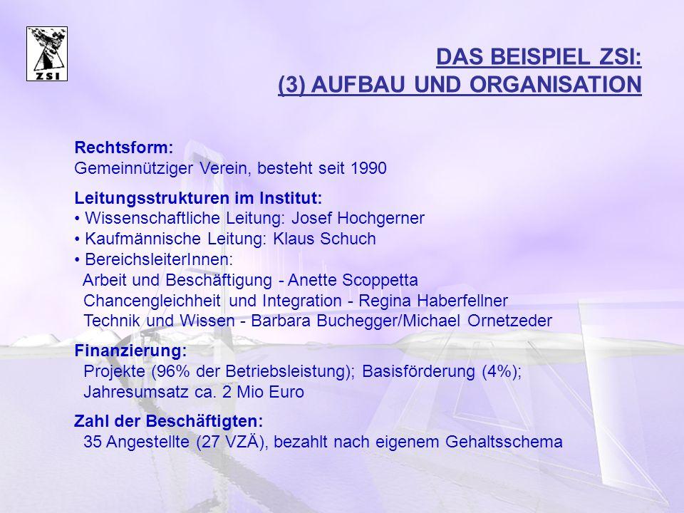 DAS BEISPIEL ZSI: (3) AUFBAU UND ORGANISATION