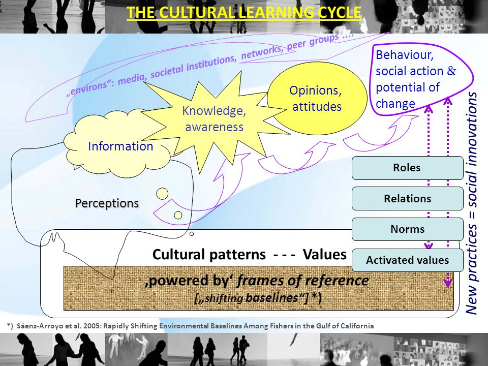 The CULTURAL LEARNING CYCLE