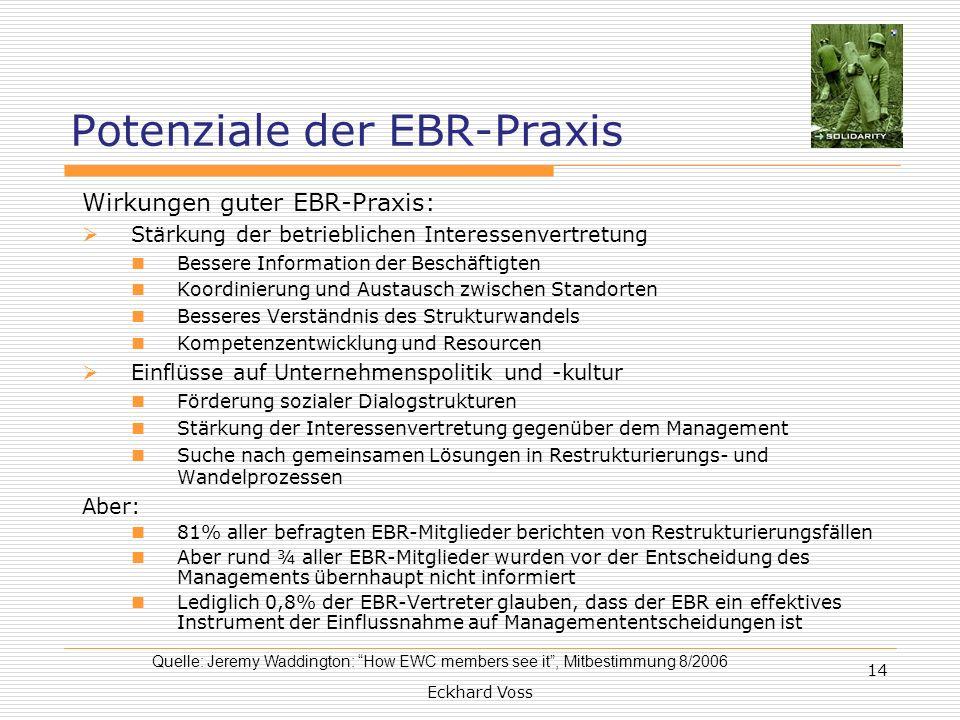 Potenziale der EBR-Praxis