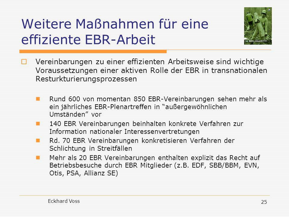 Weitere Maßnahmen für eine effiziente EBR-Arbeit