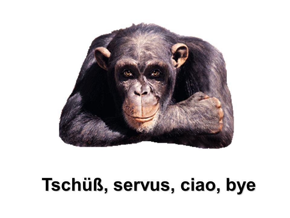 Tschüß, servus, ciao, bye