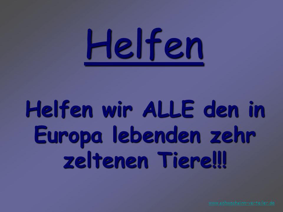 Helfen wir ALLE den in Europa lebenden zehr zeltenen Tiere!!!