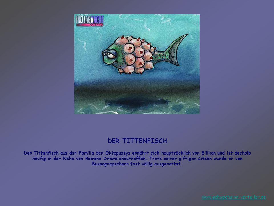 DER TITTENFISCH Der Tittenfisch aus der Familie der Oktopussys ernährt sich hauptsächlich von Silikon und ist deshalb häufig in der Nähe von Ramona Drews anzutreffen. Trotz seiner giftigen Zitzen wurde er von Busengrapschern fast völlig ausgerottet.