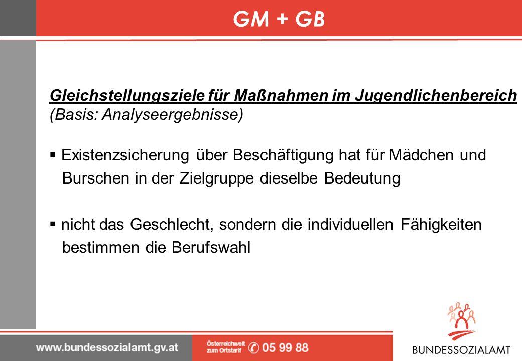 GM + GBGleichstellungsziele für Maßnahmen im Jugendlichenbereich (Basis: Analyseergebnisse) Existenzsicherung über Beschäftigung hat für Mädchen und.