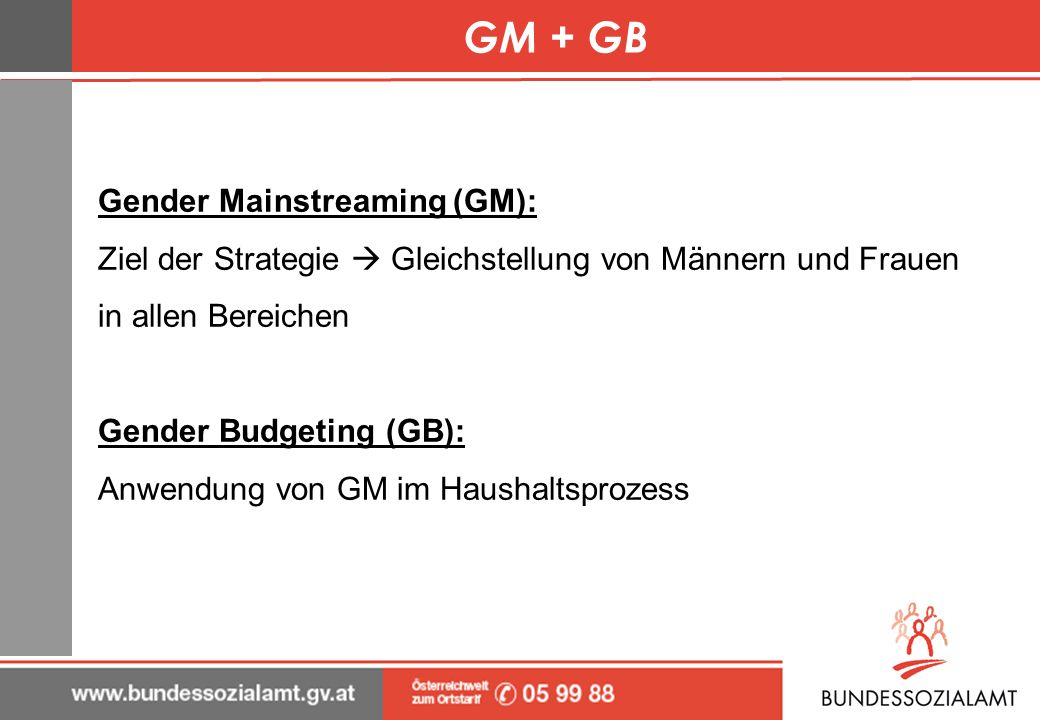 GM + GB Gender Mainstreaming (GM):