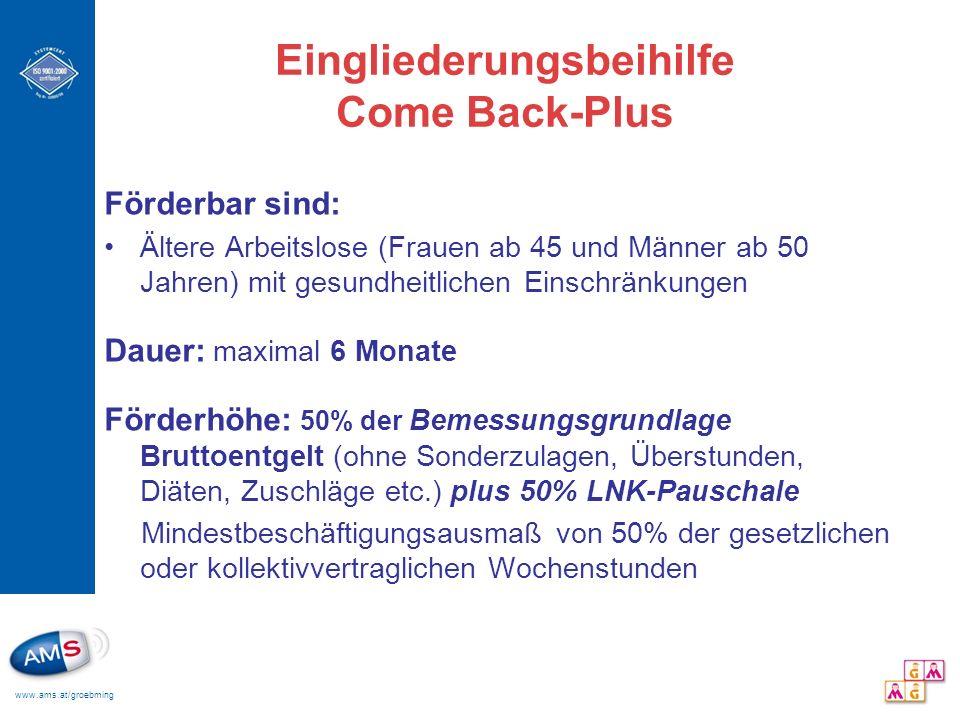 Eingliederungsbeihilfe Come Back-Plus