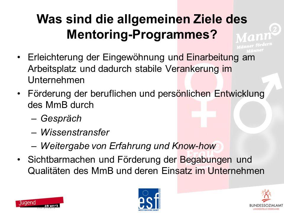 Was sind die allgemeinen Ziele des Mentoring-Programmes