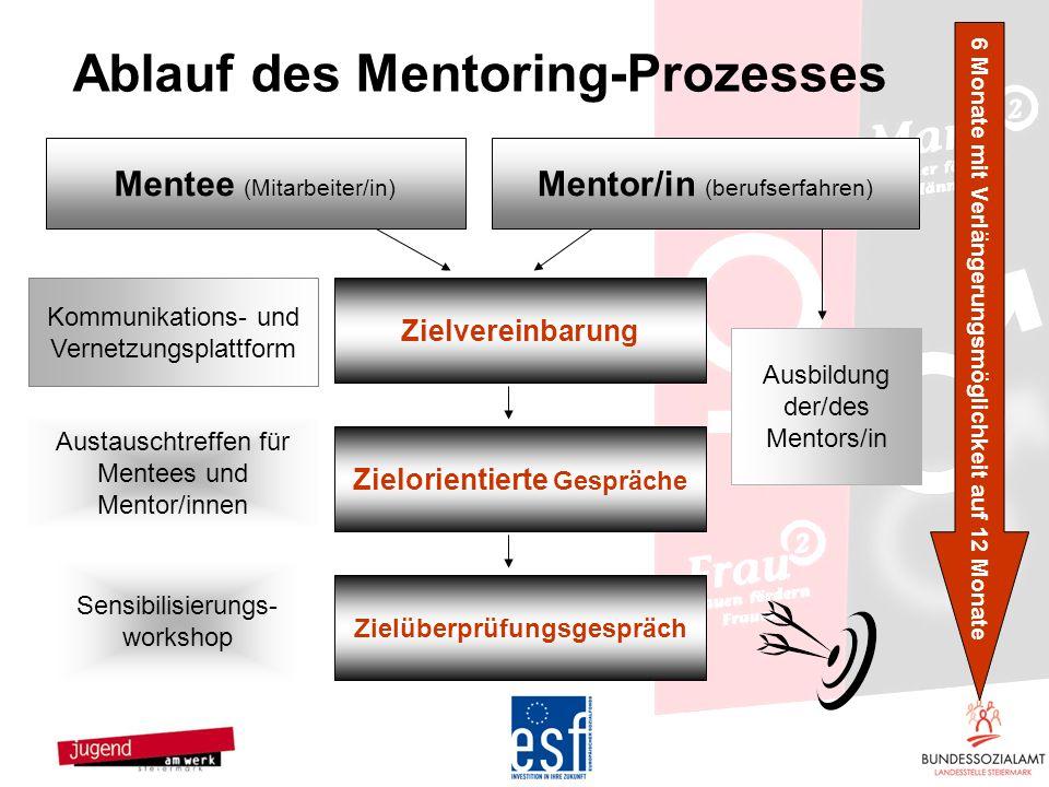 Ablauf des Mentoring-Prozesses