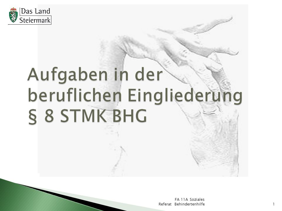 Aufgaben in der beruflichen Eingliederung § 8 STMK BHG