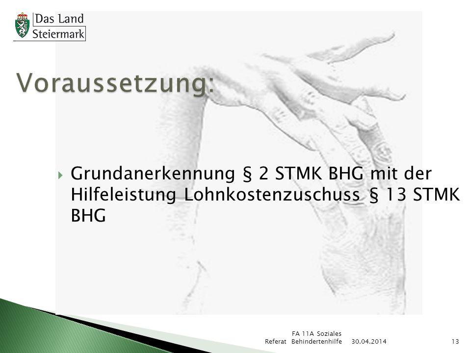 Voraussetzung: Grundanerkennung § 2 STMK BHG mit der Hilfeleistung Lohnkostenzuschuss § 13 STMK BHG.