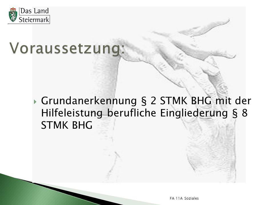 Voraussetzung: Grundanerkennung § 2 STMK BHG mit der Hilfeleistung berufliche Eingliederung § 8 STMK BHG.
