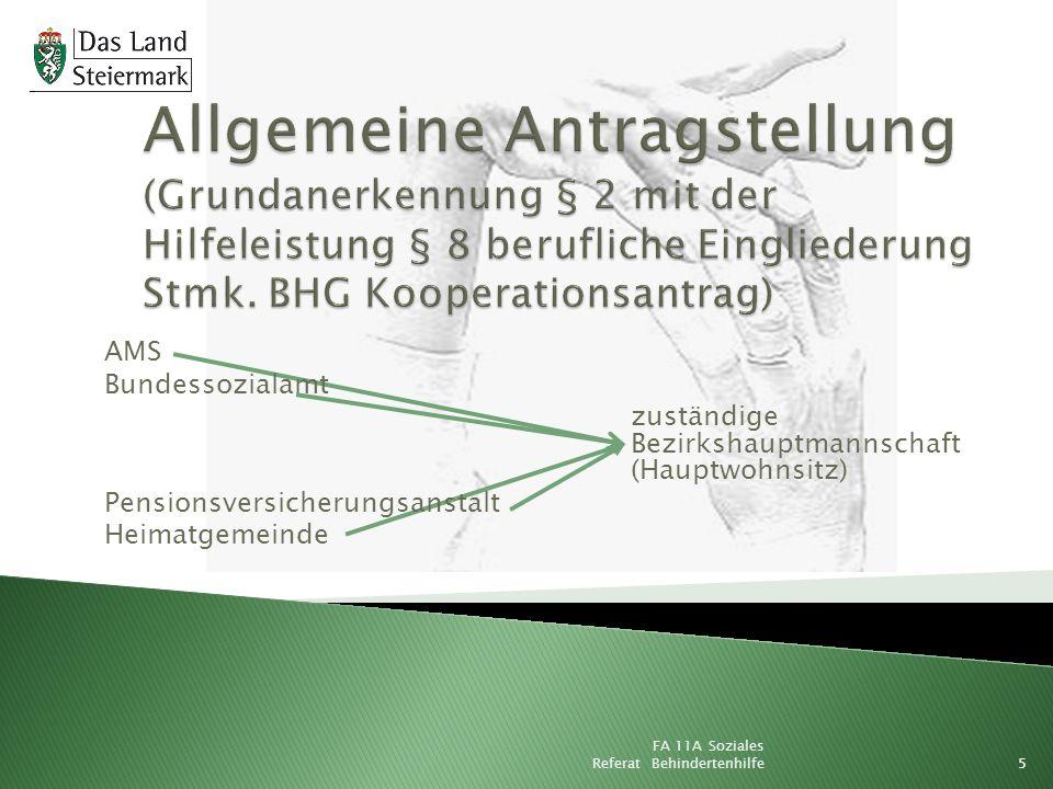 Allgemeine Antragstellung (Grundanerkennung § 2 mit der Hilfeleistung § 8 berufliche Eingliederung Stmk. BHG Kooperationsantrag)