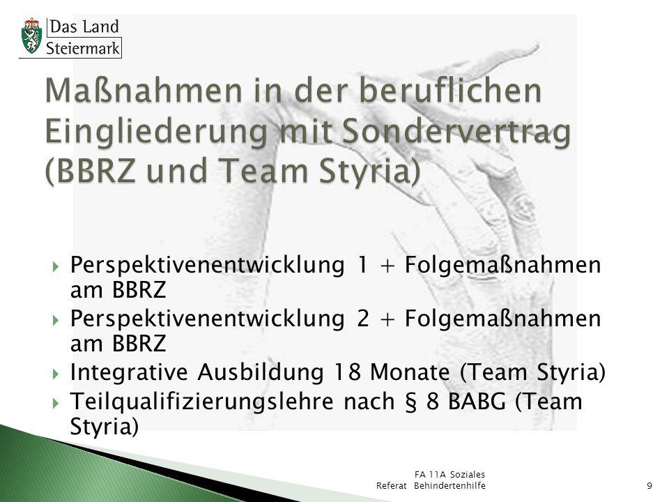 Maßnahmen in der beruflichen Eingliederung mit Sondervertrag (BBRZ und Team Styria)