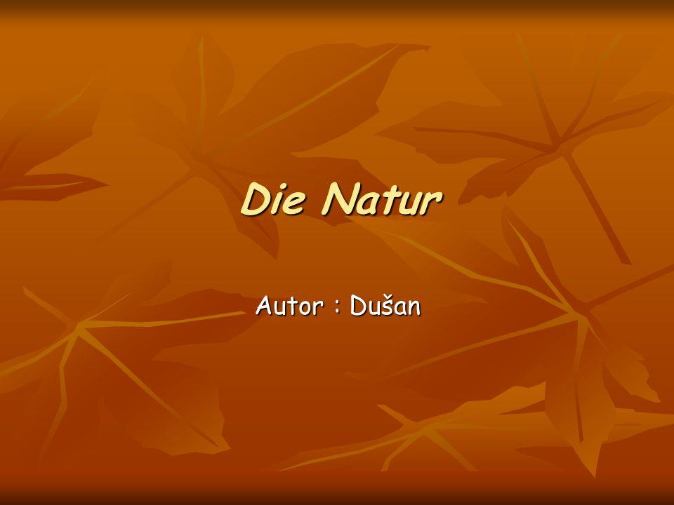 Die Natur Autor : Dušan