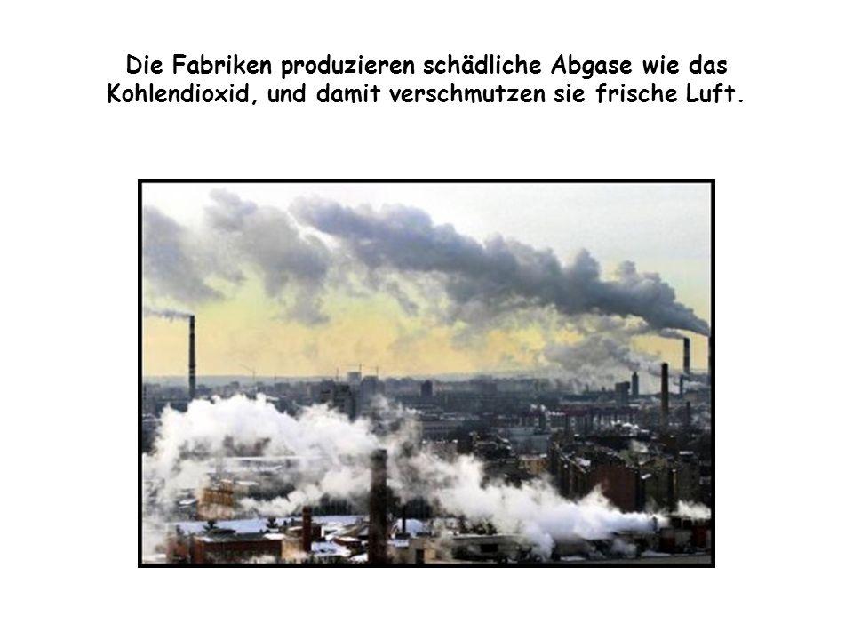 Die Fabriken produzieren schädliche Abgase wie das Kohlendioxid, und damit verschmutzen sie frische Luft.