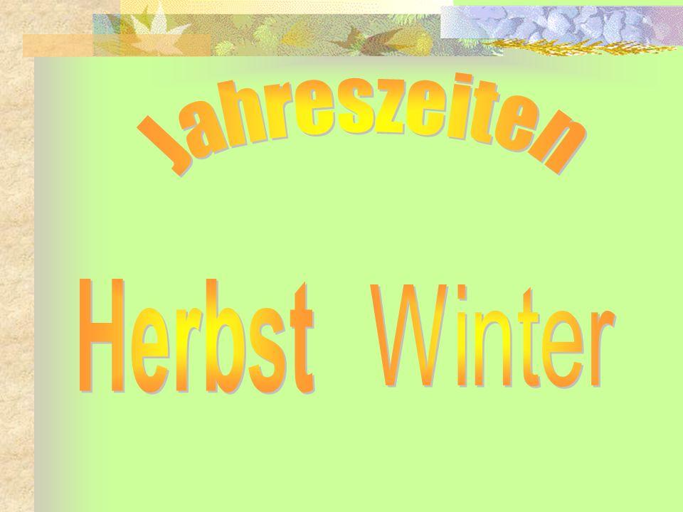 Jahreszeiten Herbst Winter