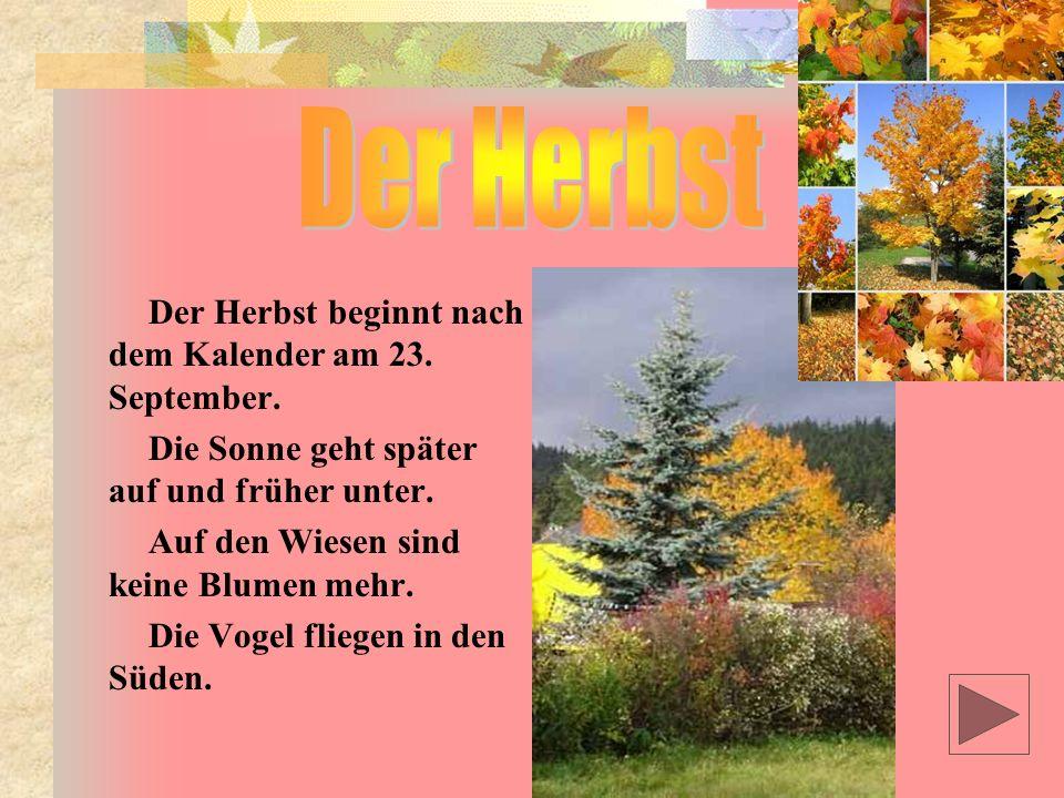 Der Herbst Der Herbst beginnt nach dem Kalender am 23. September.
