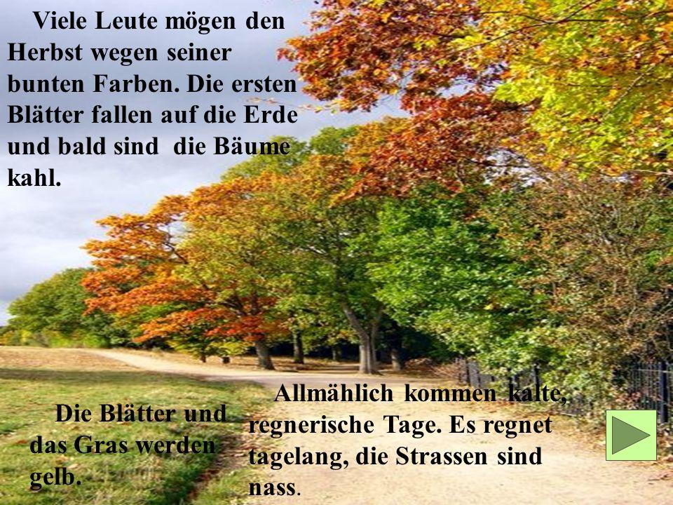 Viele Leute mögen den Herbst wegen seiner bunten Farben