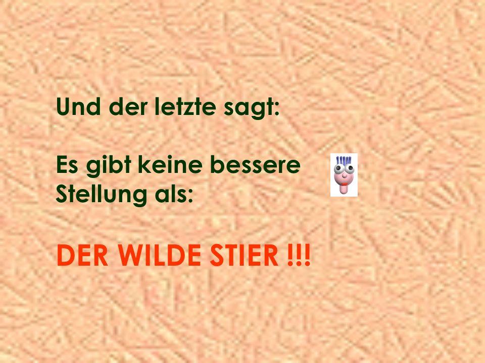DER WILDE STIER !!! Und der letzte sagt: