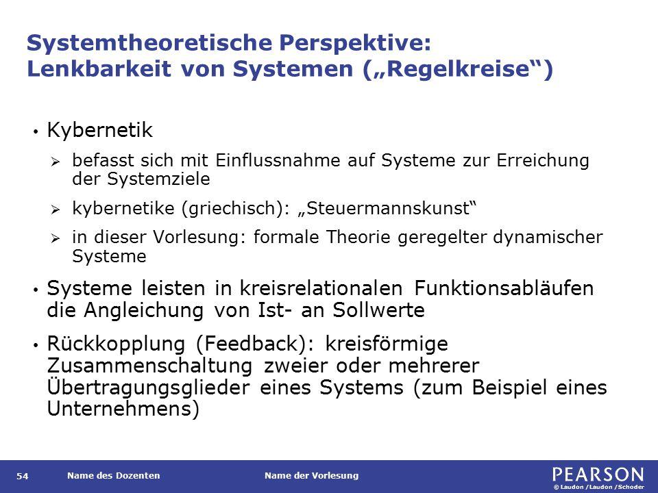 Systemtheoretische Perspektive: Lenkbarkeit von Systemen