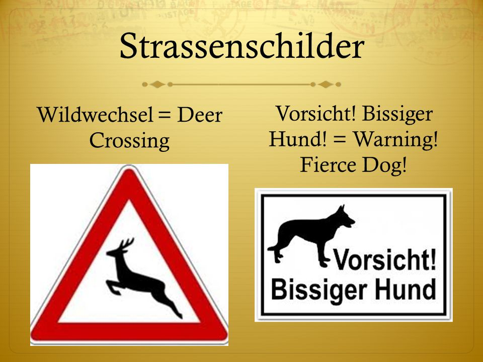 Strassenschilder Wildwechsel = Deer Crossing