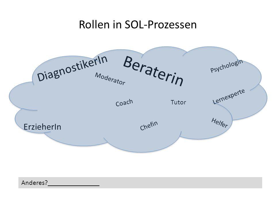 Rollen in SOL-Prozessen