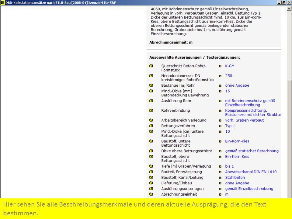 Hier sehen Sie alle Beschreibungsmerkmale und deren aktuelle Ausprägung, die den Text bestimmen.