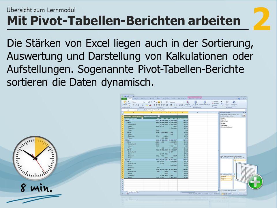 Mit Pivot-Tabellen-Berichten arbeiten
