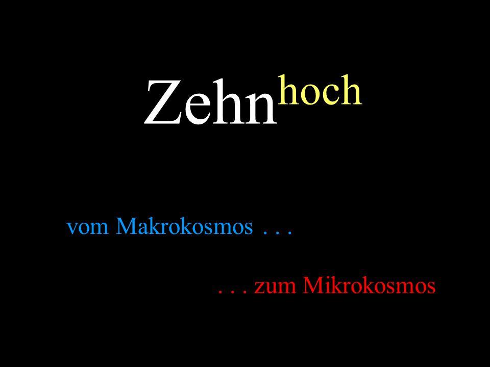 Zehnhoch vom Makrokosmos . . . . . . zum Mikrokosmos